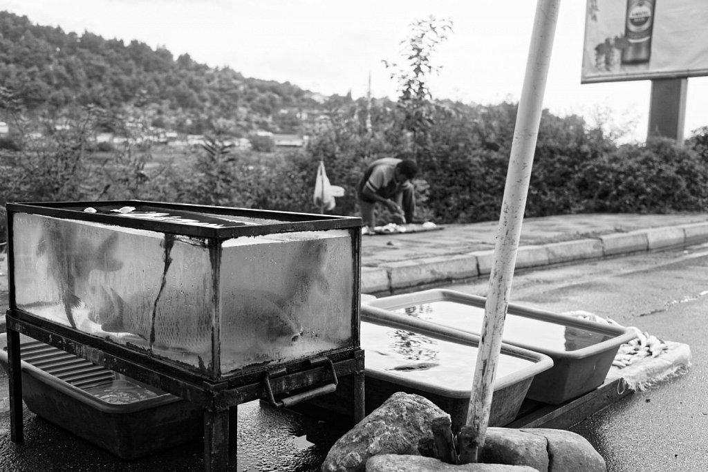 MonteNegro-09222014-2178-Brey-Photography.jpg