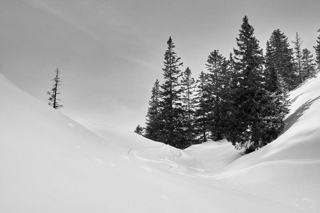 Sunkenkopf-11022018-106-Brey-Photography.jpg