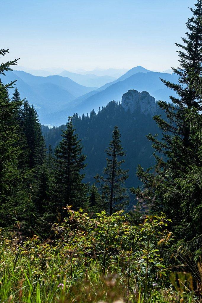 Laber-Bergbahn-31072018-009-Brey-Photography.jpg