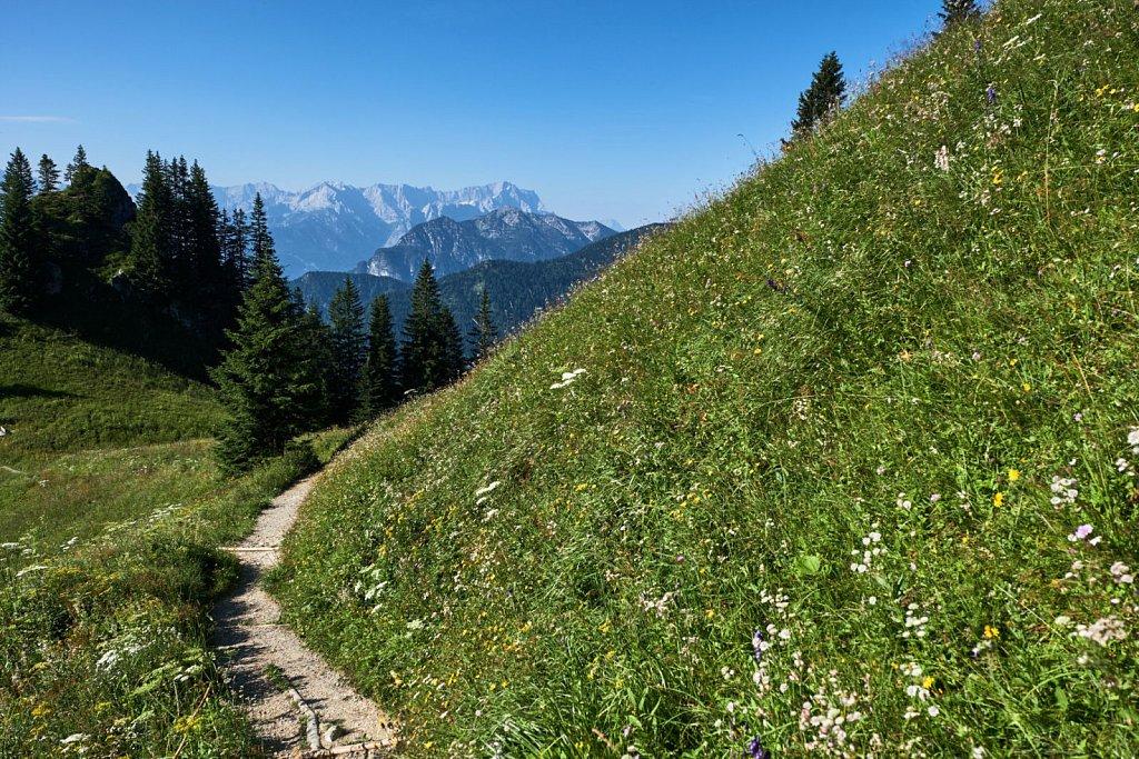 Laber-Bergbahn-31072018-015-Brey-Photography.jpg