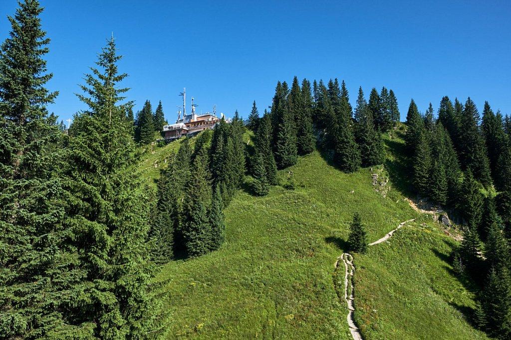 Laber-Bergbahn-31072018-027-Brey-Photography.jpg