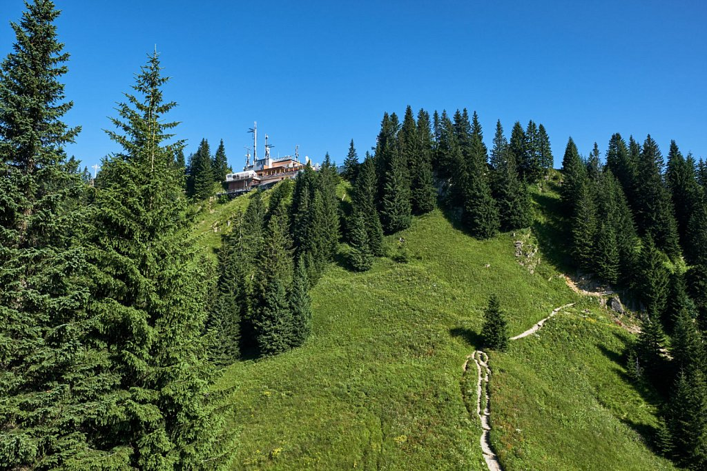 Laber-Bergbahn-31072018-027-Brey-Photography.jpg
