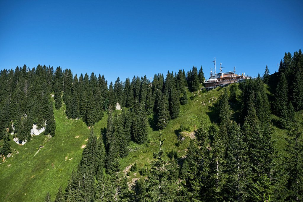 Laber-Bergbahn-31072018-041-Brey-Photography.jpg