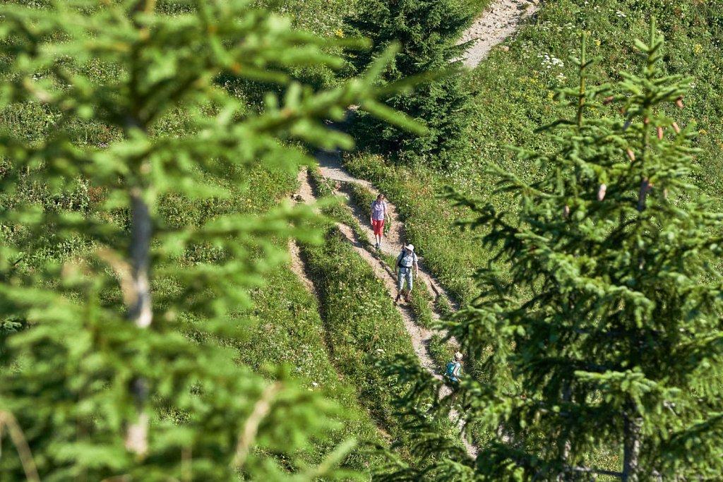 Laber-Bergbahn-31072018-048-Brey-Photography.jpg