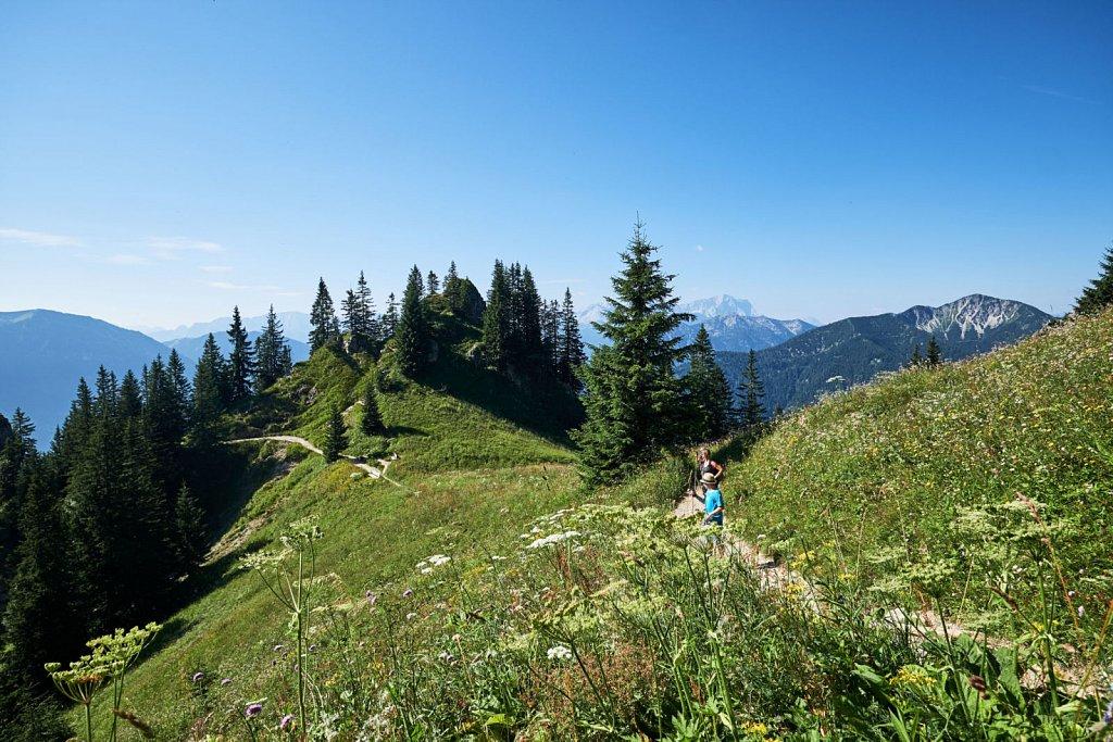 Laber-Bergbahn-31072018-072-Brey-Photography.jpg