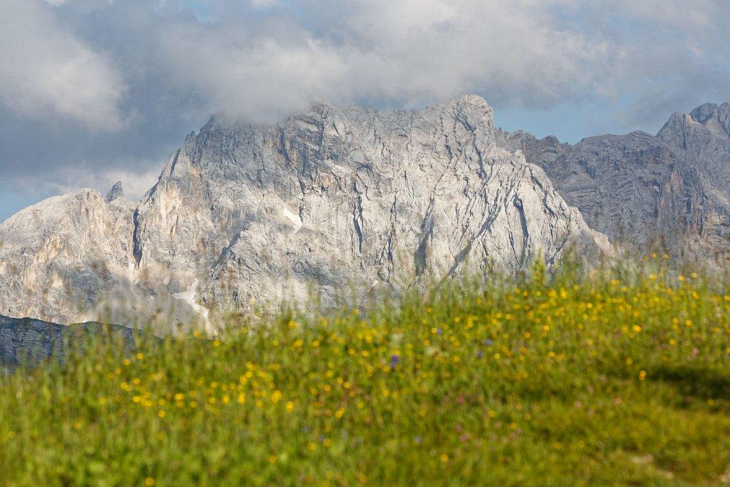 Wettersteinalps-13072018-007-Brey-Photography.jpg
