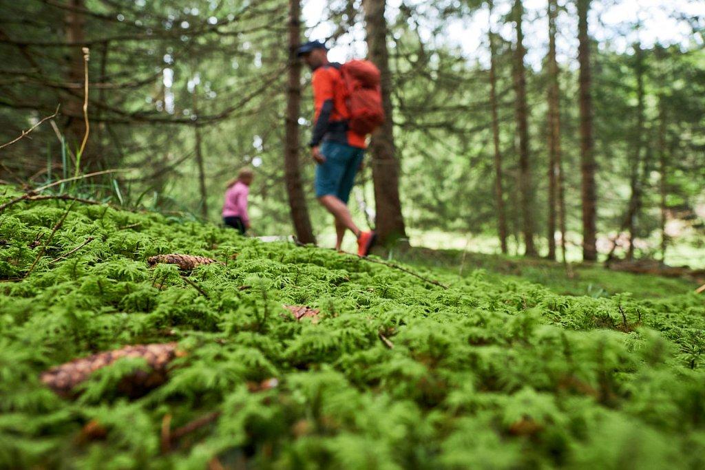 Kranzberg-Herbstwandern-27082018-114-Brey-Photography.jpg