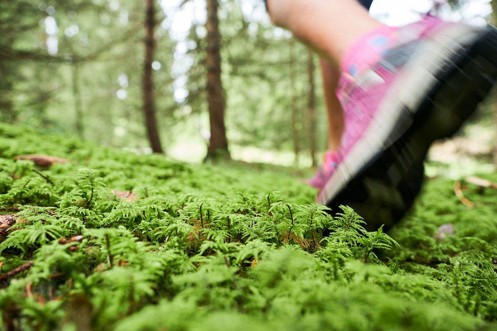 Kranzberg-Herbstwandern-27082018-097-Brey-Photography.jpg
