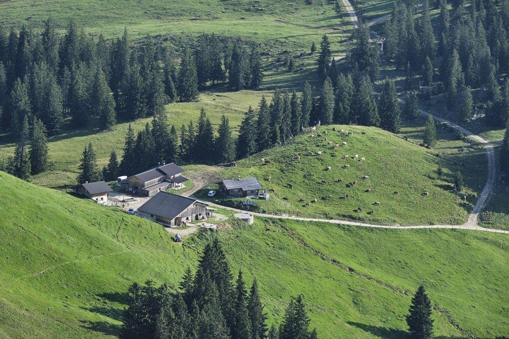 Almbetieb-Karwendel-antBRY-08302019-411.jpg