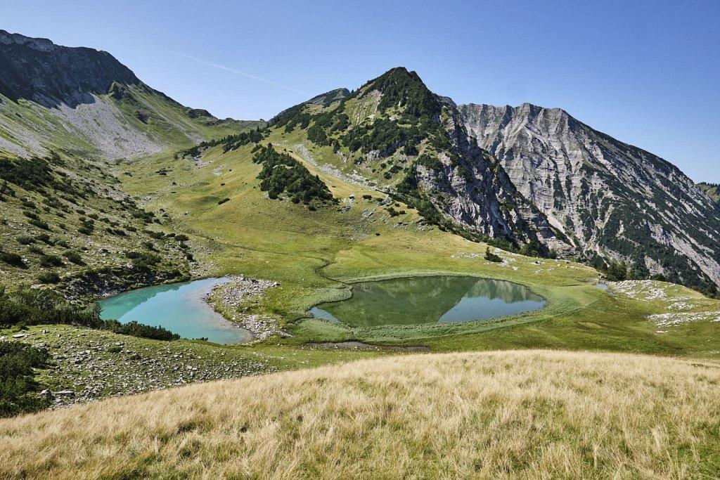 Almbetieb-Karwendel-antBRY-08272019-085.jpg