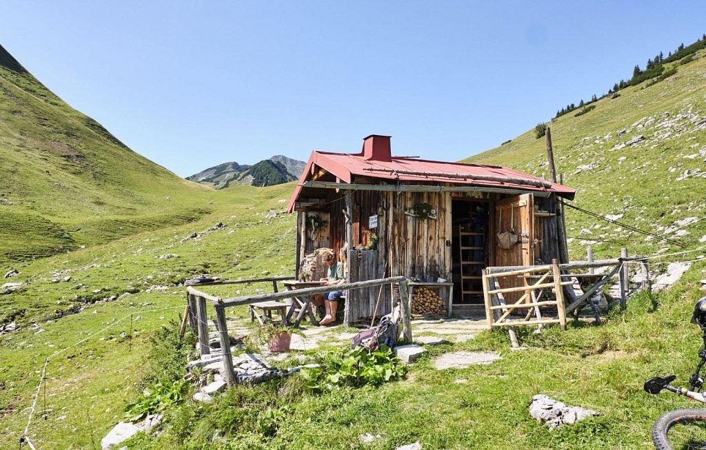 Almbetieb-Karwendel-antBRY-08272019-074.jpg