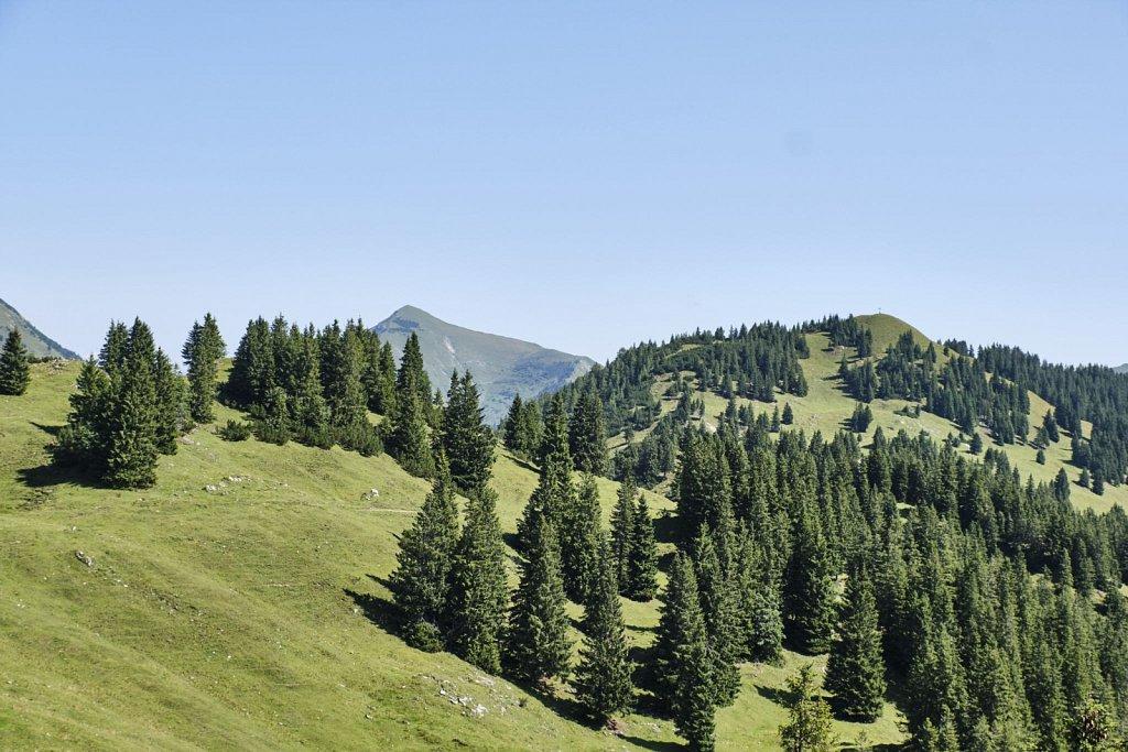 Almbetieb-Karwendel-antBRY-08272019-059.jpg