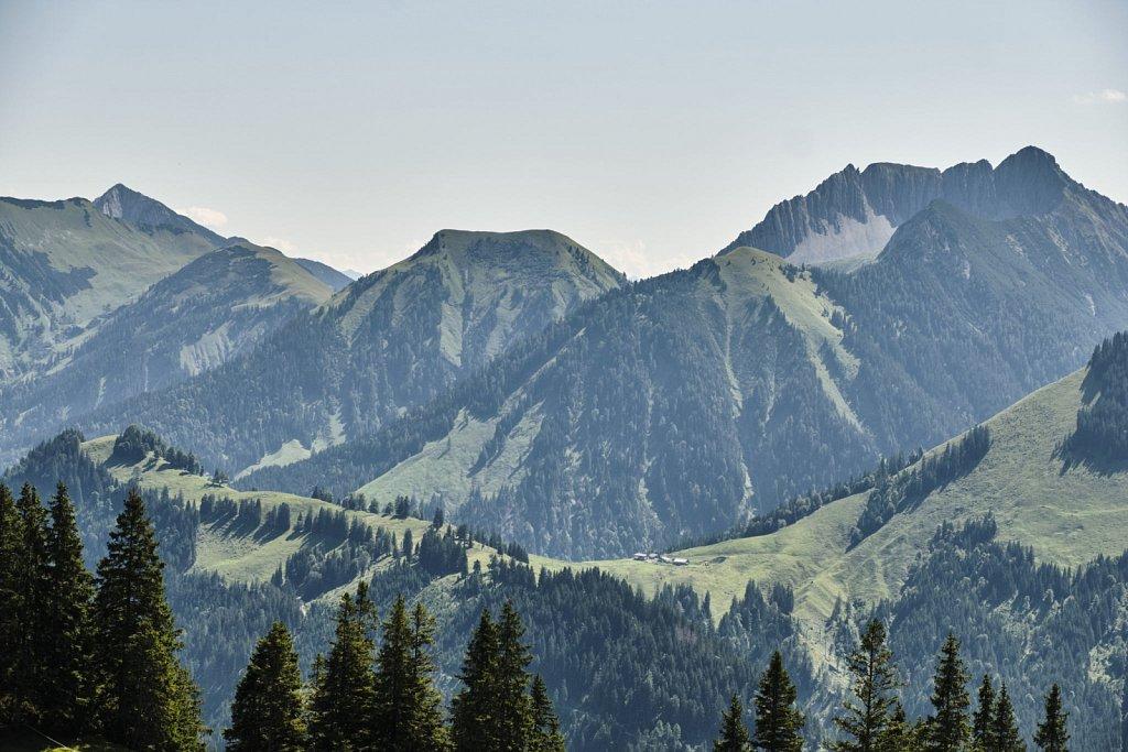 Almbetieb-Karwendel-antBRY-08272019-058.jpg