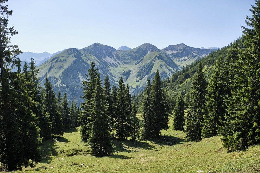 Almbetieb-Karwendel-antBRY-08272019-053.jpg
