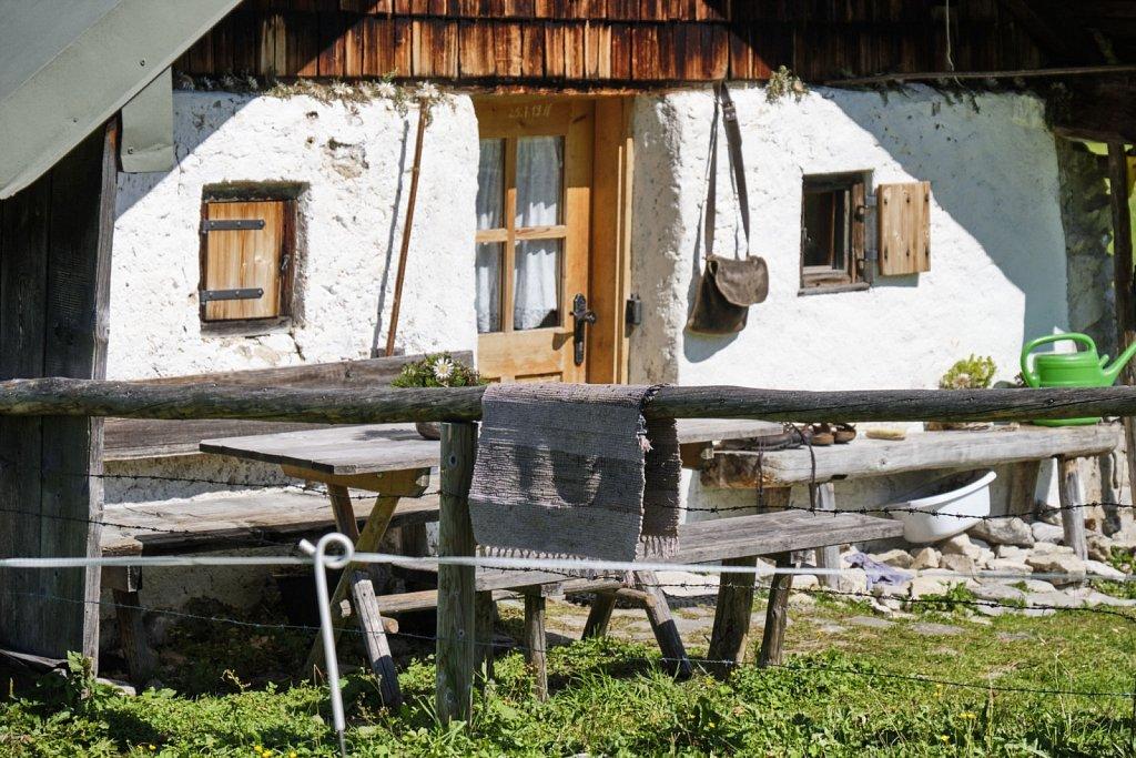 Almbetieb-Karwendel-antBRY-08272019-039.jpg