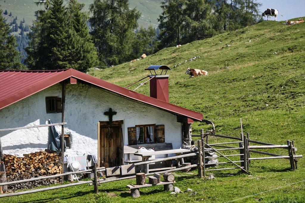 Almbetieb-Karwendel-antBRY-08272019-031.jpg