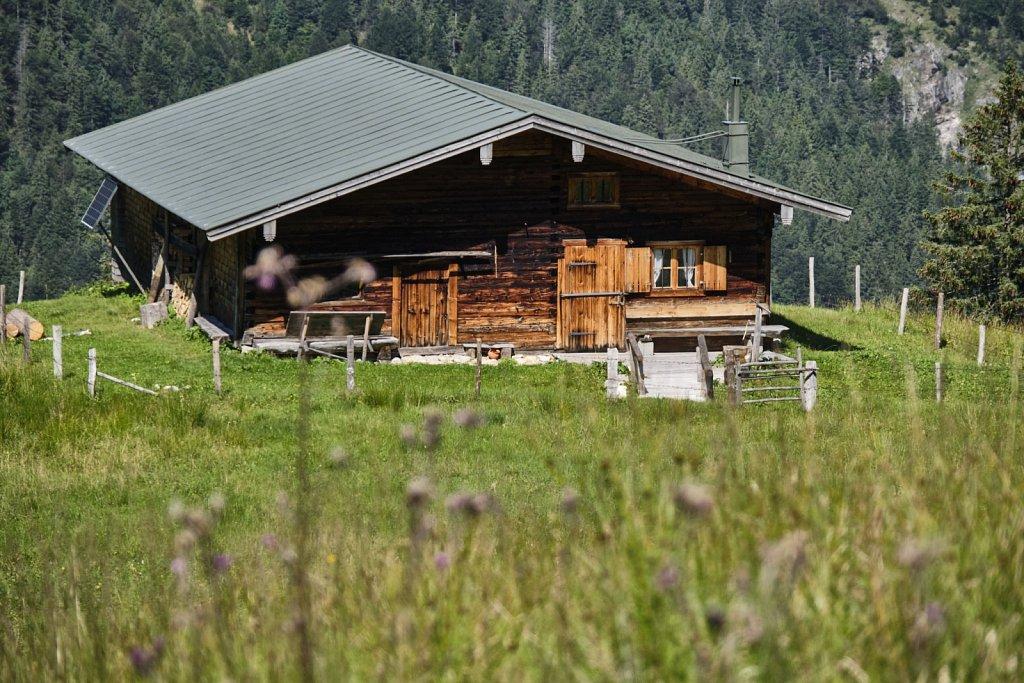 Almbetieb-Karwendel-antBRY-08272019-010.jpg