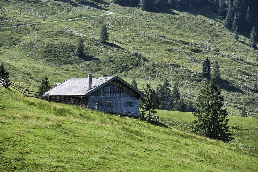 Almbetieb-Karwendel-antBRY-08272019-006.jpg