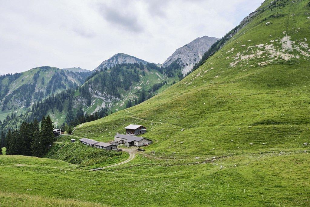 BaumgartenSattel-Karwendel-antBRY-07272019-018.jpg