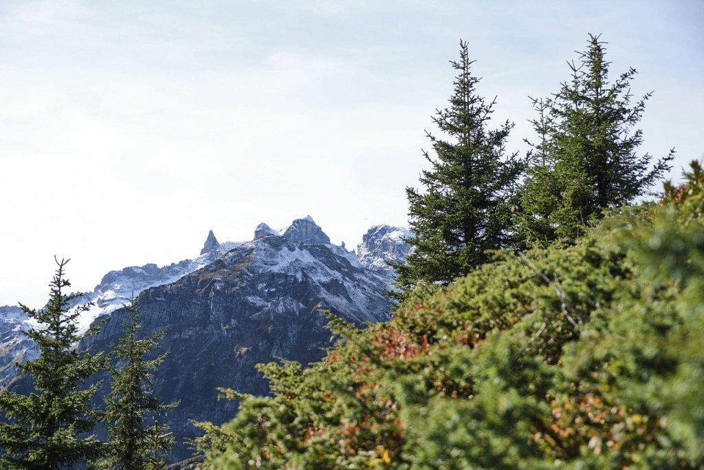 SCHOEFFEL-hikingCAMP-antBRY-10122019-0108.jpg