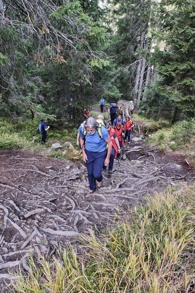SCHOEFFEL-hikingCAMP-antBRY-10132019-0612.jpg