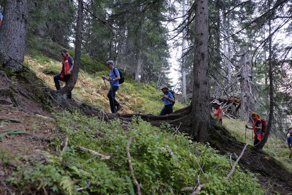 SCHOEFFEL-hikingCAMP-antBRY-10132019-0599.jpg