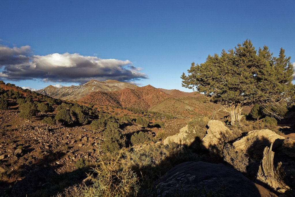 Marokko-11182013-0564-DxO.jpg