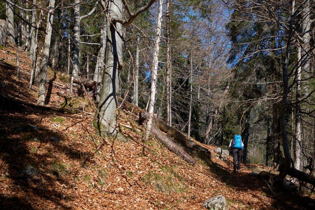 SchellAlm-31102017-078-Brey-Photography.jpg
