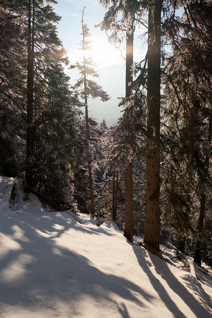 Sunkenkopf-11022018-025-Brey-Photography.jpg
