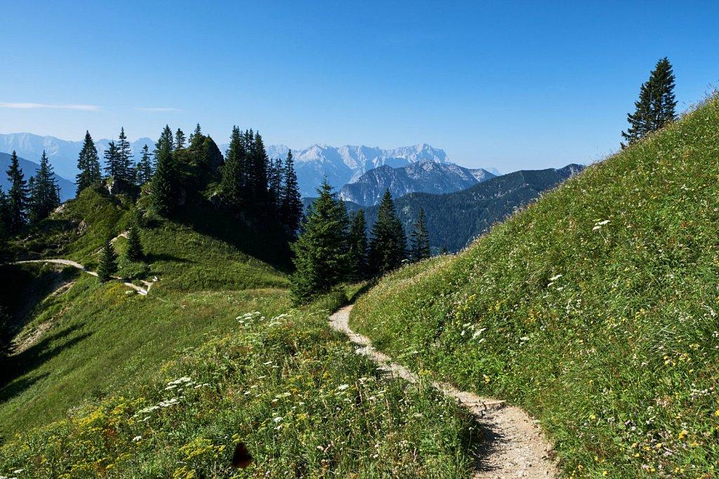 Laber-Bergbahn-31072018-014-Brey-Photography.jpg