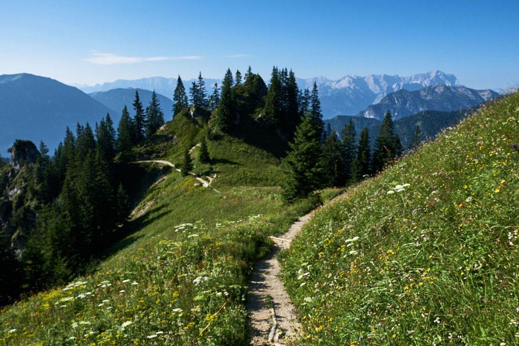 Laber-Bergbahn-31072018-016-Brey-Photography.jpg