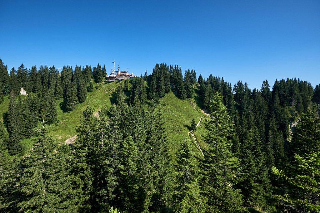 Laber-Bergbahn-31072018-053-Brey-Photography.jpg