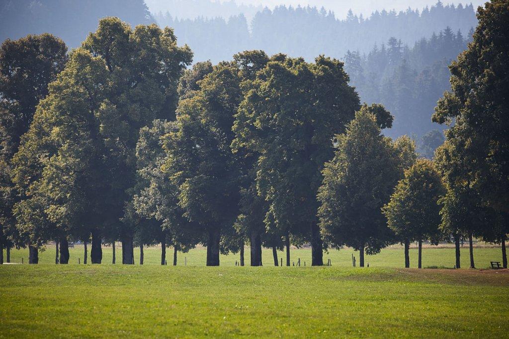 Lindau-Krottenkopf-175-Brey-Photography.jpg